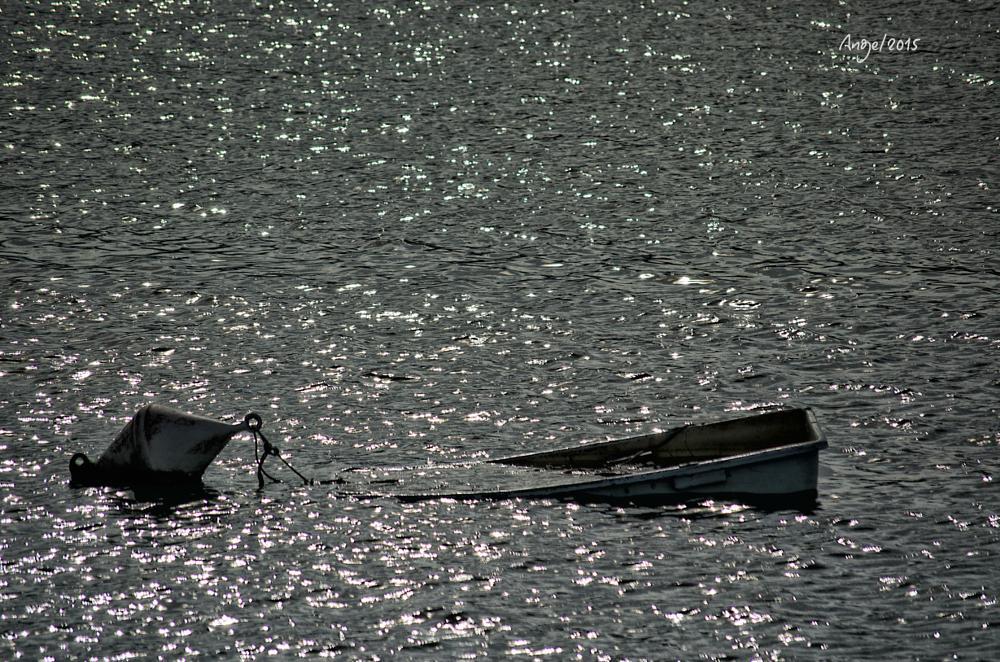 Photo in Sea and Sand #barca.mar.bahia.