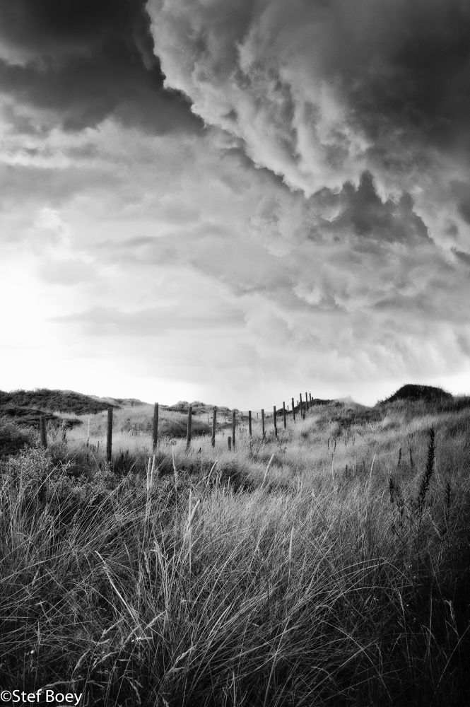 Photo in Landscape #landscape #black and white #art