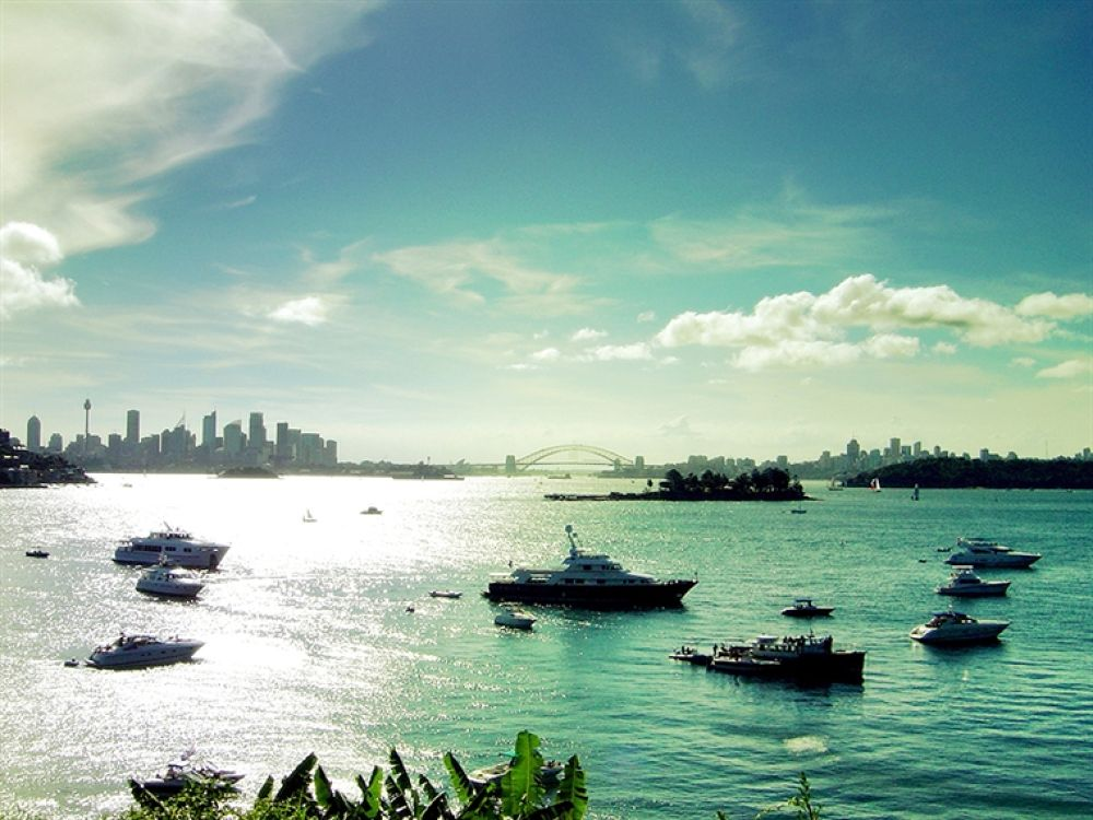 Photo in Random #sydney #city #from #vaucluse #queens #ave
