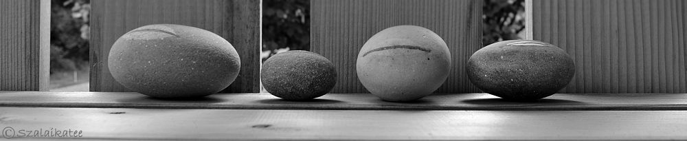 Photo in Nature #milestone #stone #minimal #nature #elements