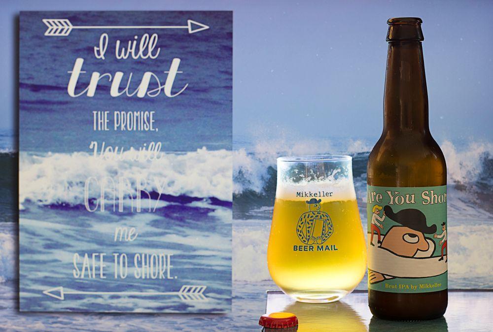 Photo in Fine Art #biere #bière #beer #bier #cerveza #cerveja #birra #öl #olut #øl #ipa #brutipa #boisson #drink #hdr #danemark #denmark #shore #côte #rivage