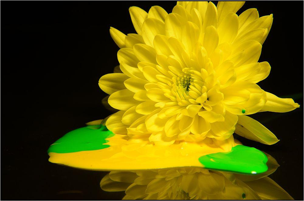 Photo in Fine Art #petals #paint #green #yellow #flower