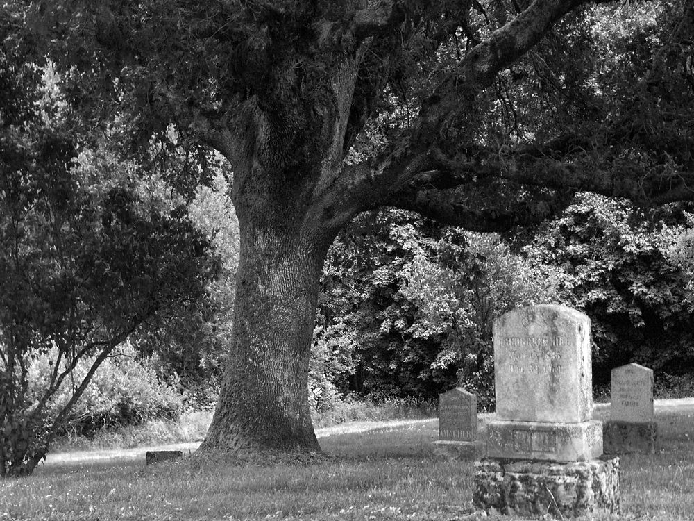 Photo in Black and White #graveyard #cemetery #b&w #tombstone