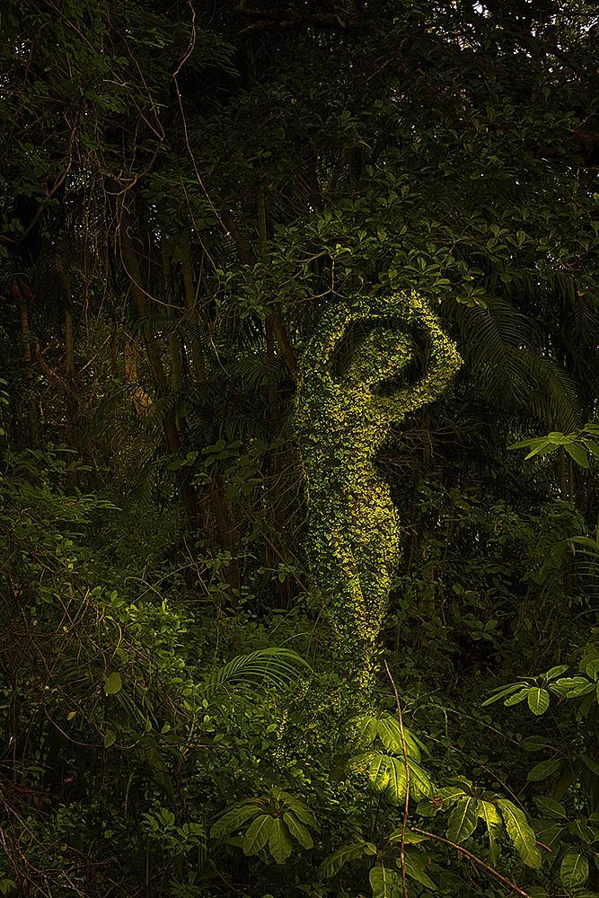 Photo in Fine Art #green #bush #woman