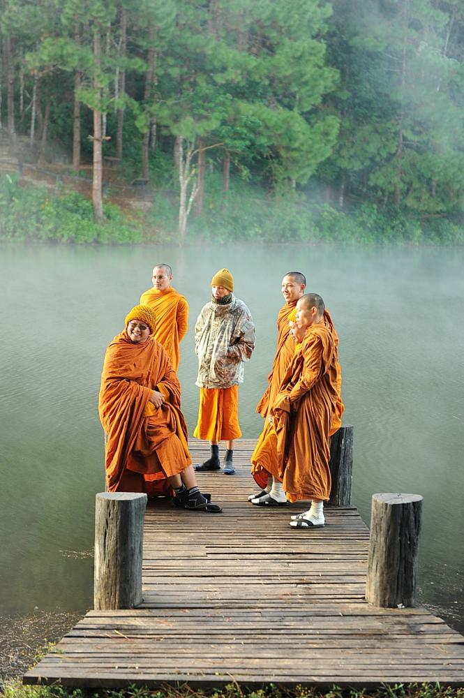 Photo in People #monk #morning #thailand #sunlight #yellow