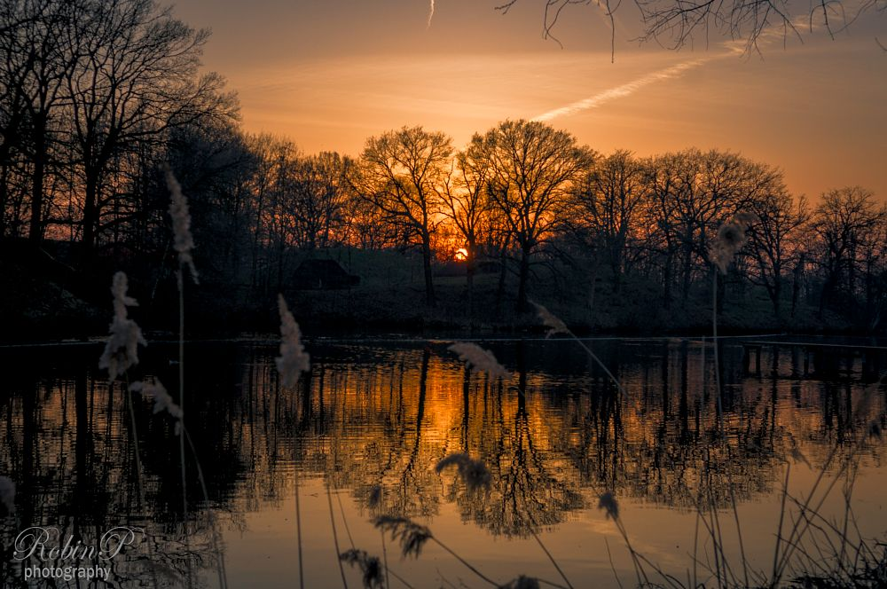 Photo in Landscape #sunset #clouds #water #holland