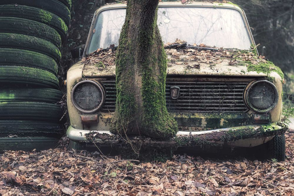 Photo in Urban #urbex #abandoned #car #decay #tree #nature #abbandonata #verfall #bokeh #nature #lost #forgotten #derelict