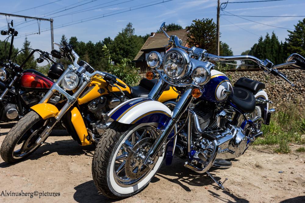 Photo in Vehicle #harley #motorbike #belgium