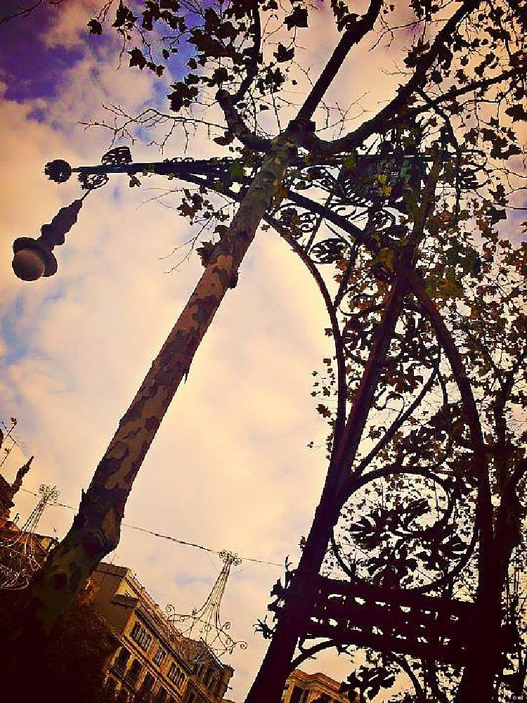 Photo in Random #farola #banco #paseo de gracia #barcelona #belleza #arquitectura #catalunya