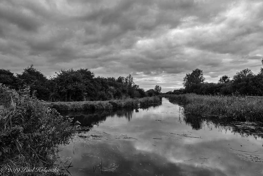 Photo in Black and White #lode #clouds #trees