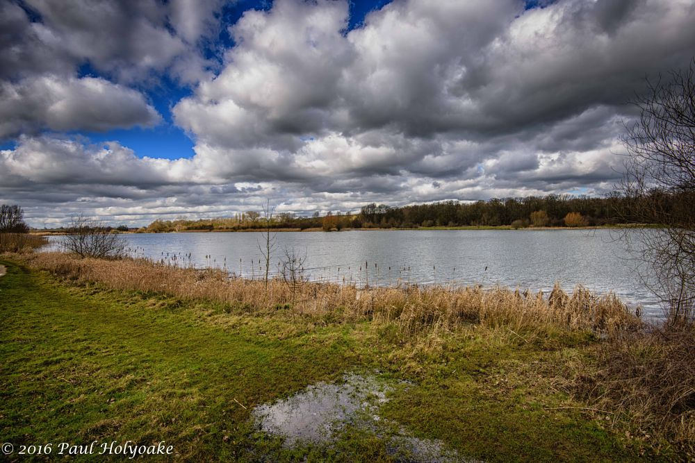Photo in Landscape #clouds #lake #reeds #trees