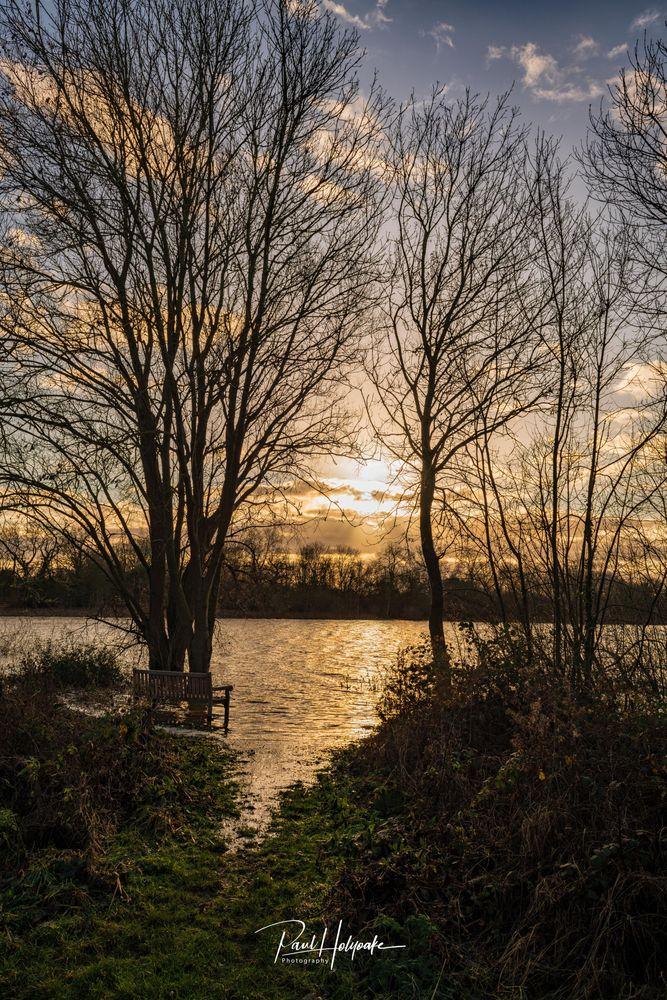 Photo in Landscape #trees #sunset #lake