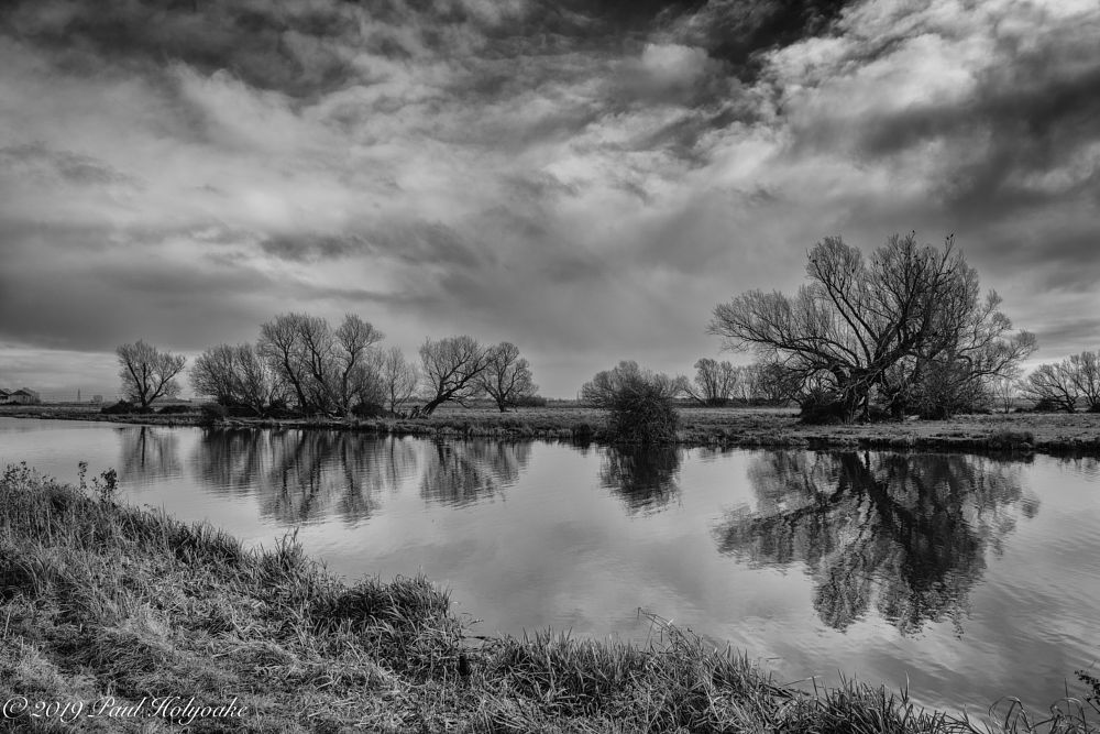 Photo in Black and White #trees #clouds #river