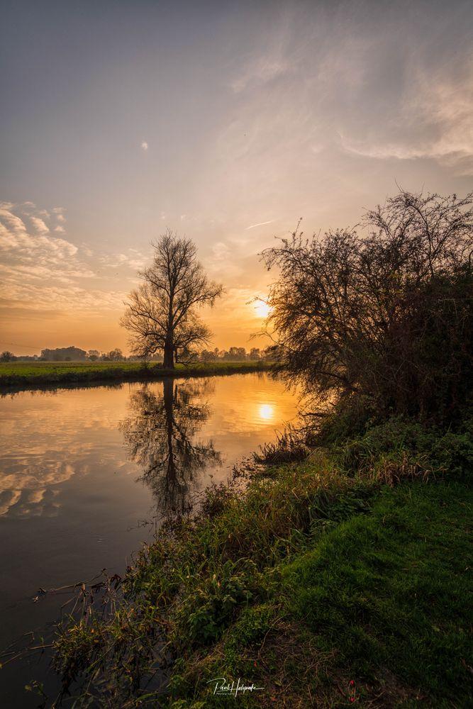 Photo in Landscape #river #tree #dusk