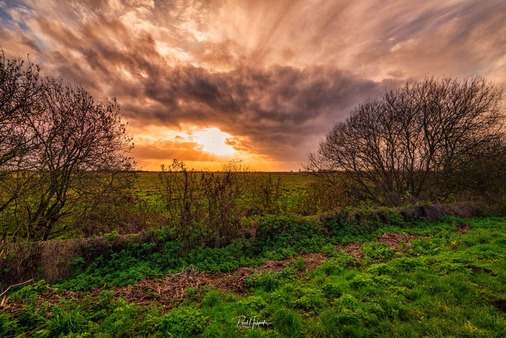 Photo in Landscape #sun #clouds #trees