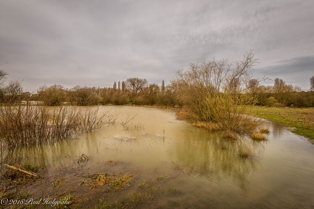 Photo in Landscape #flood #lake #sky