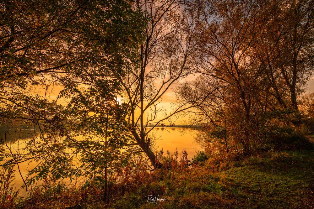 Photo in Landscape #lake #trees #dusk
