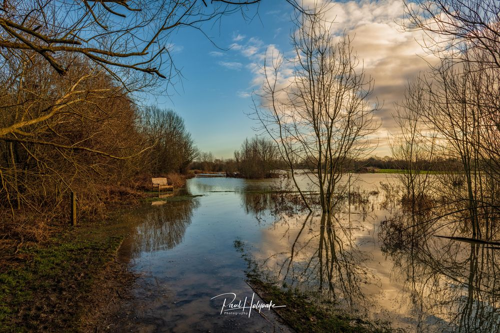 Photo in Landscape #lake #trees #bench #flood #clouds