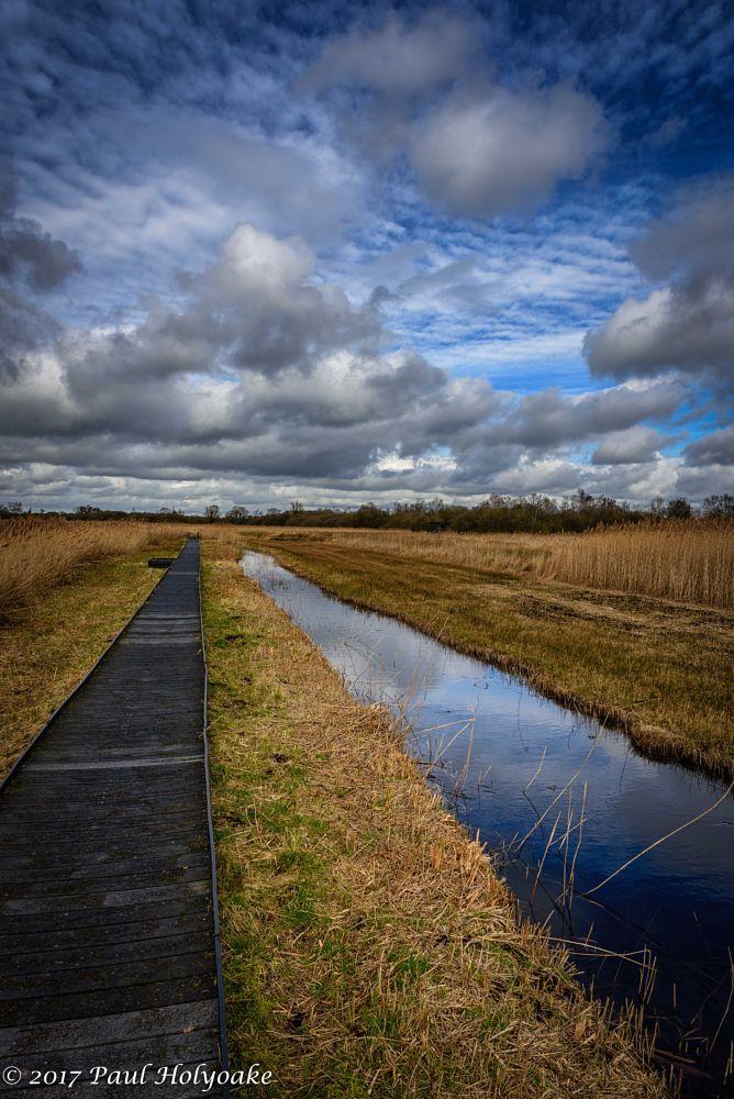 Photo in Landscape #boardwalk #clouds #stream
