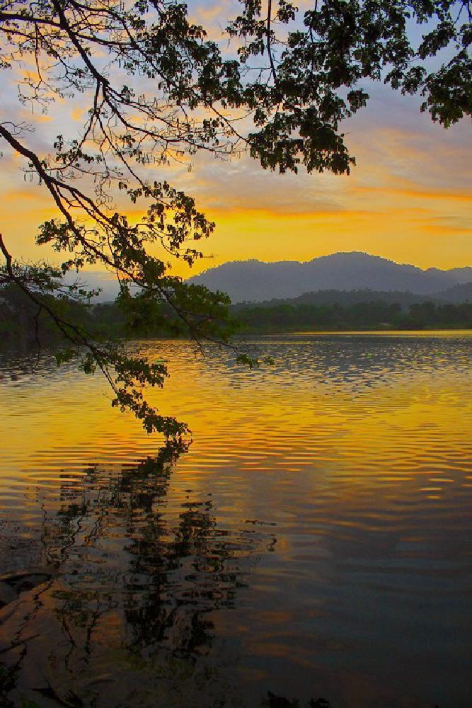 Photo in Landscape #landscape #sunrise #water #sky #tree