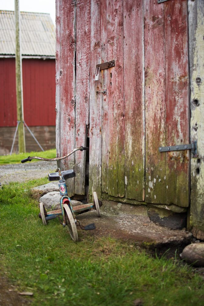 Photo in Vehicle #tricycle #vihicle #pushbike #shed #old #parking #random #transport #worn