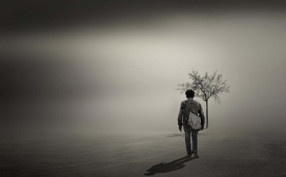 Photo in Random #lone survivor #tree #shadow #survival