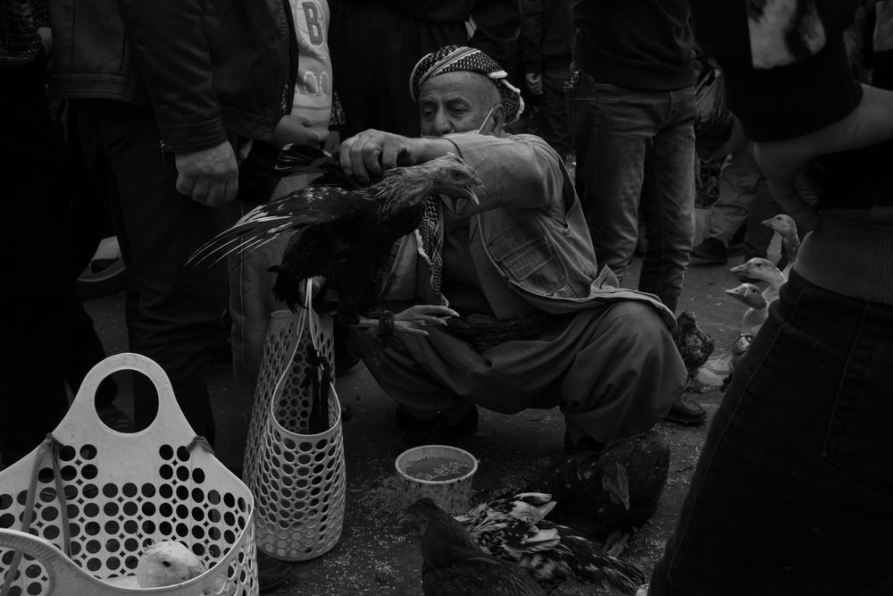 Photo in Black and White #street