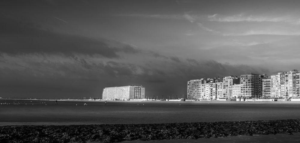 Photo in Black and White #beach #sea #seascape #black and white