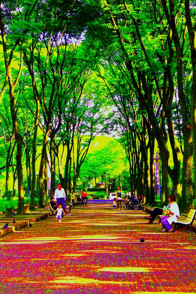 Photo in Abstract #park #green #tree