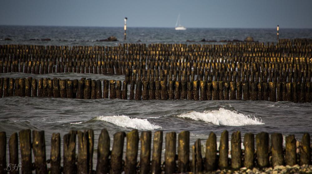 Photo in Nature #sun #baltic sea #last sunlight