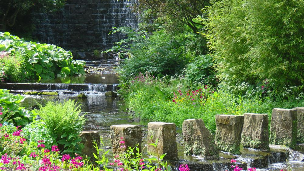 Photo in Landscape #stream #scenic #stepping stones #flowers #floral #nature #water #waterscape