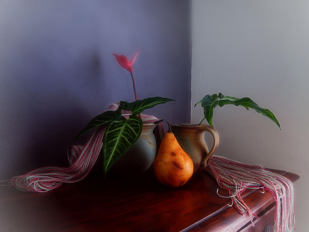 Photo in Still Life #still life #color #fruit #flowers #inside