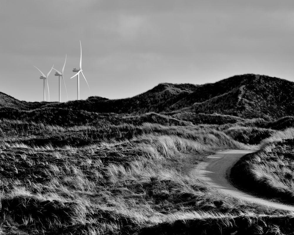 Photo in Nature #turbines #path #vind