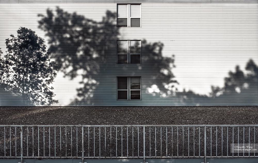 Photo in Fine Art #shadows #projection #daily #landscape #house