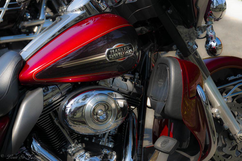 Photo in Vehicle #motorcycle #harley #davidson