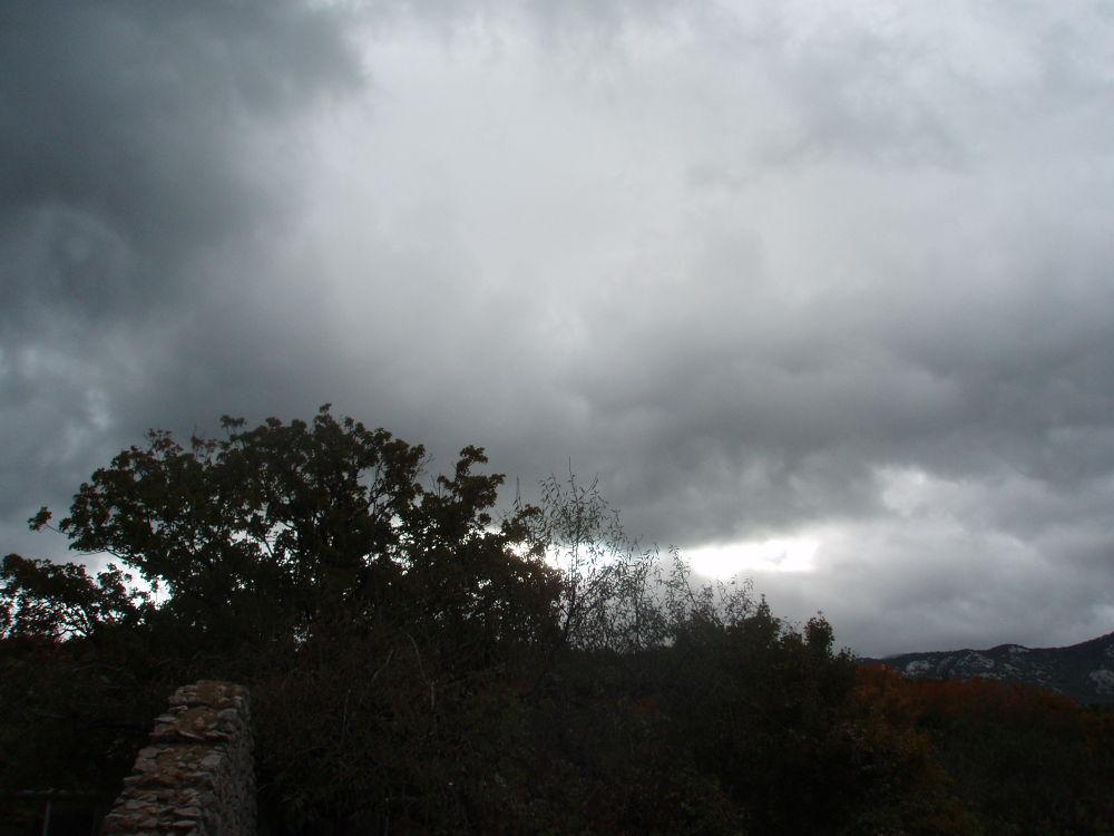 Photo in Nature #viža