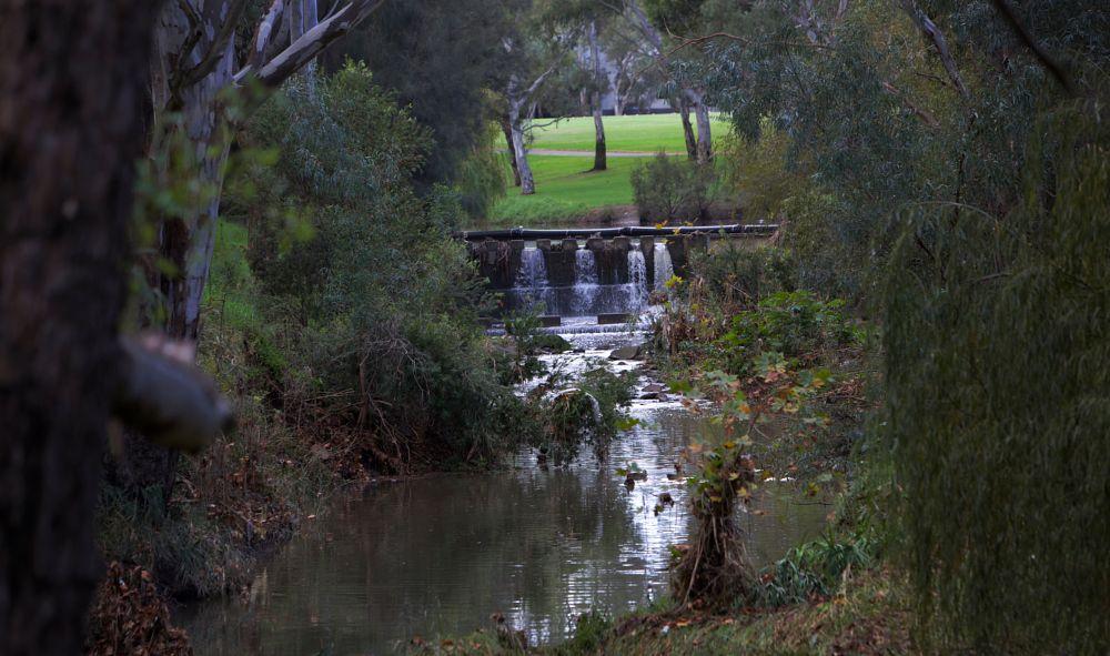 Photo in Random #river #adelaide #south australia