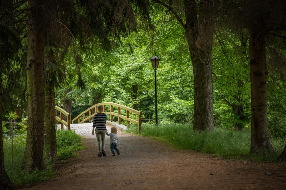 Photo in Family #family #walking #park #way #trees