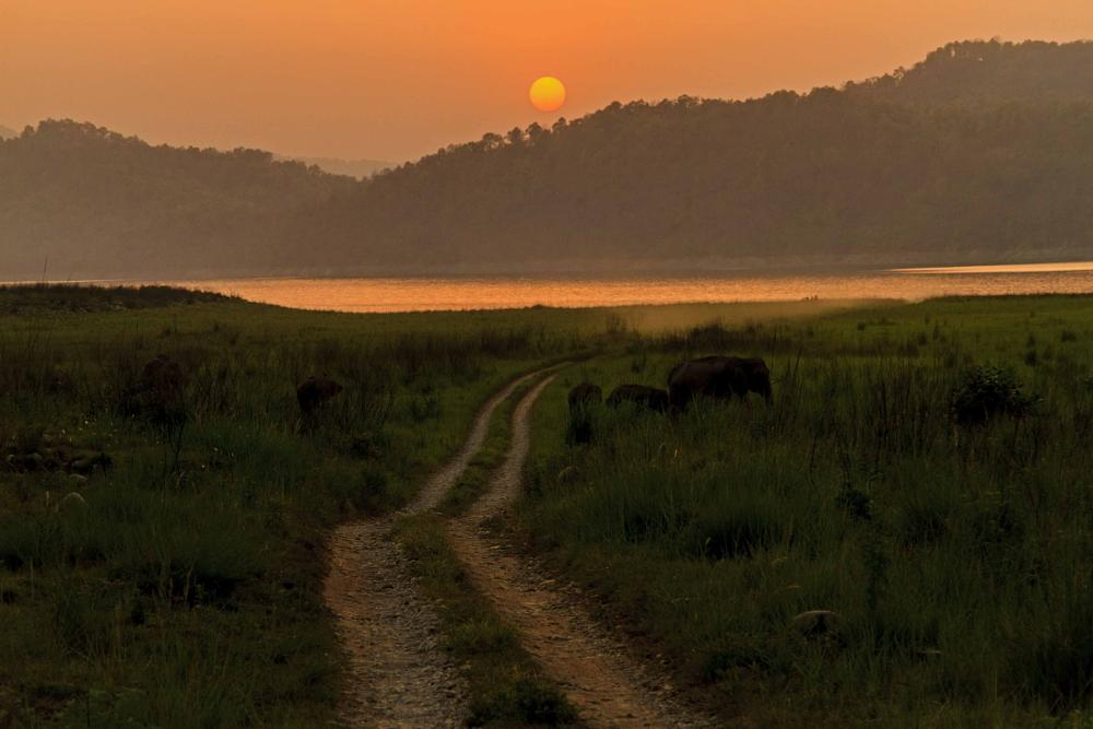 Photo in Landscape #kumaon #hills #dusk