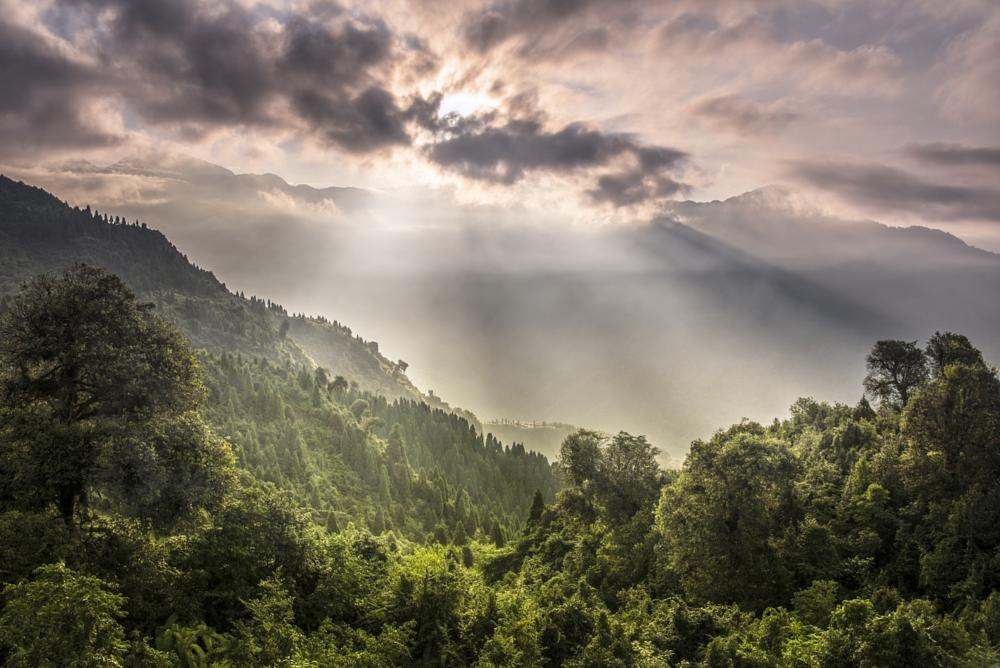 Photo in Landscape #sikkim #india #himalayas #morning #sunrise #gangtok #fog