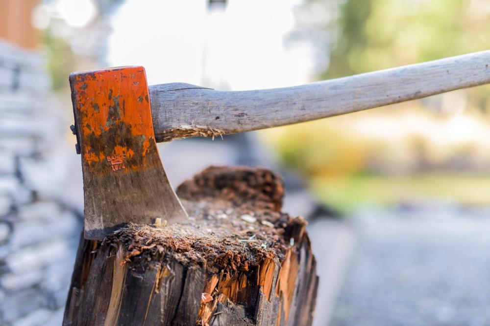 Photo in Still Life #axe #new zealand #travel and tourism #tourism #travel #working #adventure #explore #expoloration #traveller #work #man #men #red #brown #wood #timber #log #firewood
