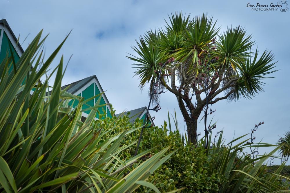 Photo in Landscape #gower #swansea #seaside #beach #wales #paradise