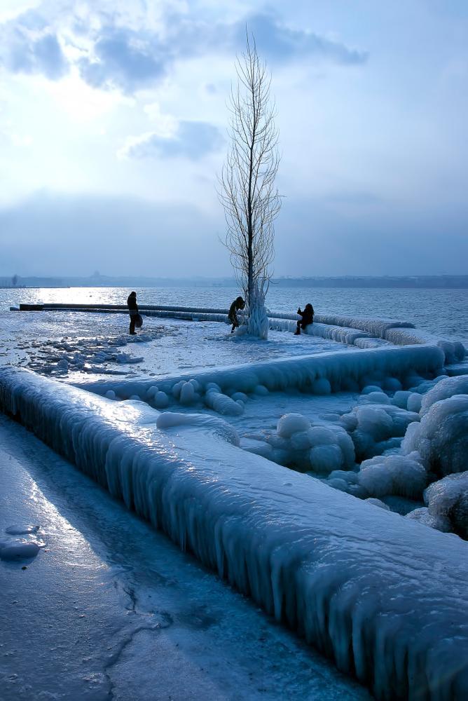 Photo in Fine Art #winter #ice #lac léman #geneva #djpart