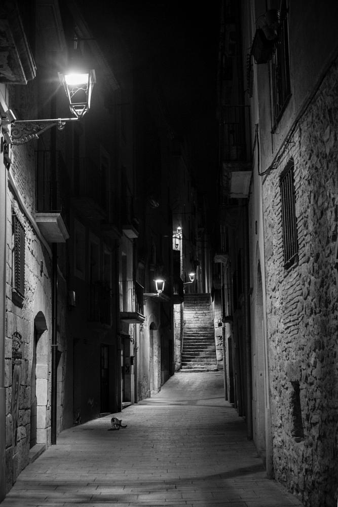 Photo in Street Photography #street #street photography #night #cat #gato #calle #nocturna #noche #black and white #blanco y negro #xt1 #fuji #tarragona