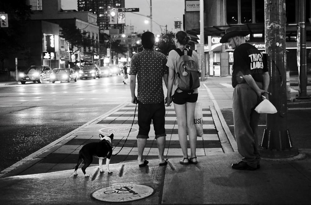 Photo in Street Photography #toronto #city #pet #dog #walking #pedestrian #street #street photography