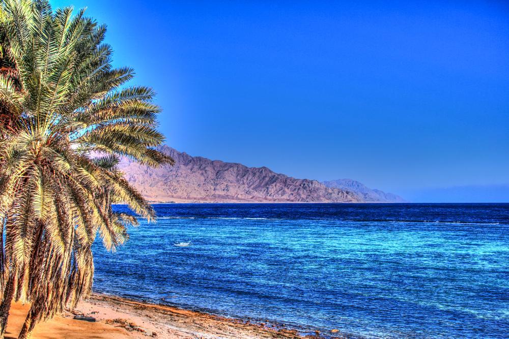Photo in Landscape #egypt #sinai #dahab #red_sea #beach