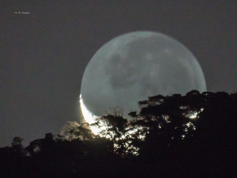 Photo in Nature #moon #trees #dark and light moon #new moon #moonset