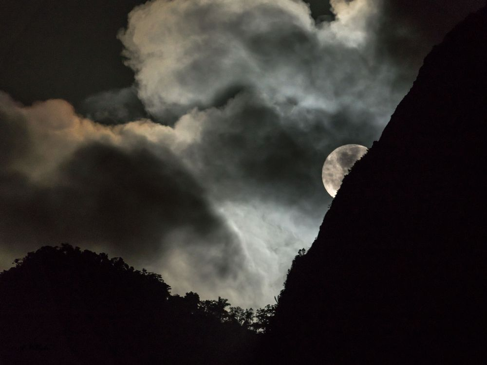 Photo in Nature #moon #moon-set #clouds #trees #mountain #gavea rock