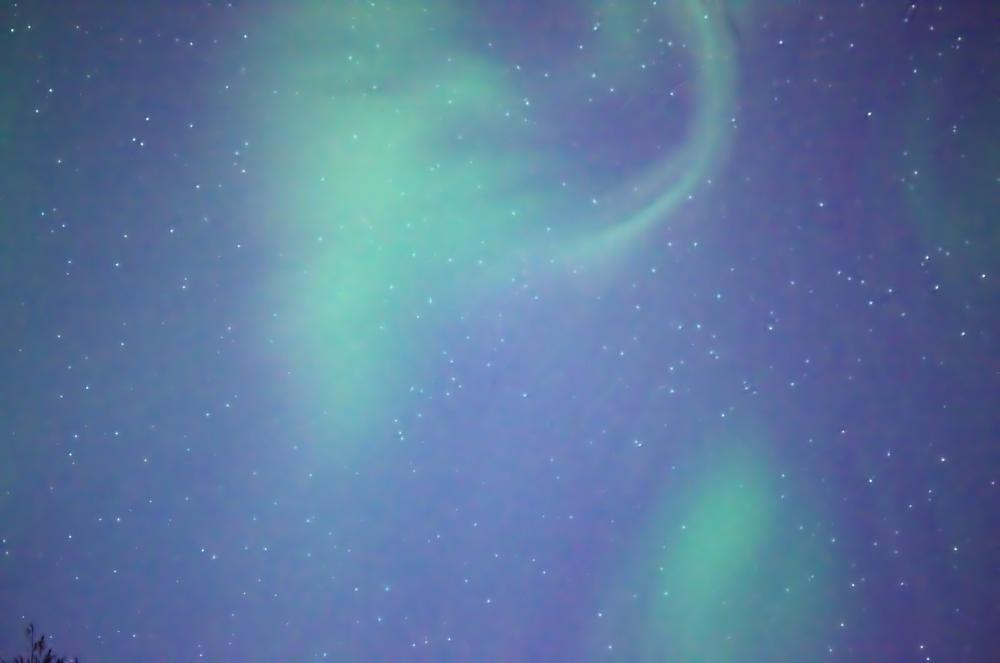 Photo in Nature #aurora #night #alaska #nikon #stars #sky