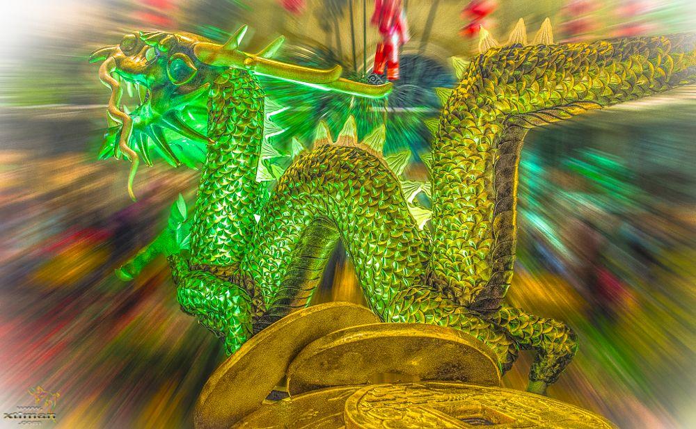 Photo in Random #dragon #chinese #new year #celebration #money #coins